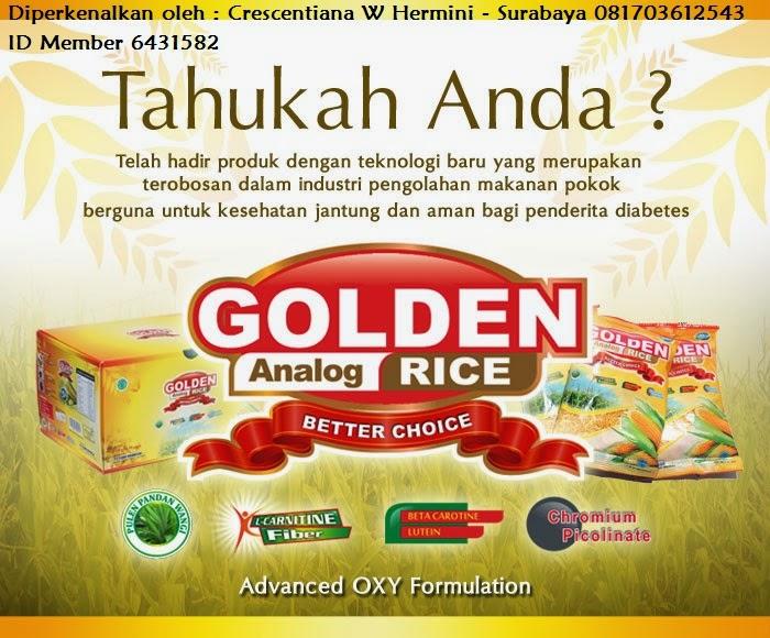Golden Analog Rice (GAR) Is A Better Choice