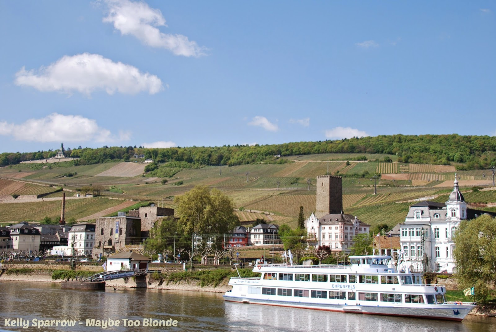 Rudesheim river cruise