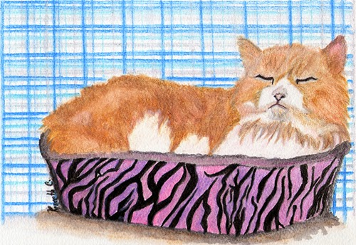 persian cat art watercolour by kenneth cajote free use