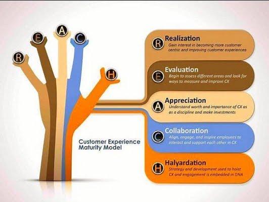 Customer Experience: REACH