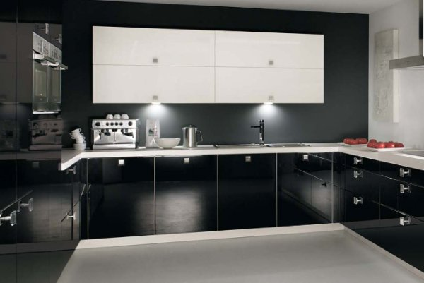 Cabinets for kitchen black kitchen cabinets design for Black and white modern kitchen designs