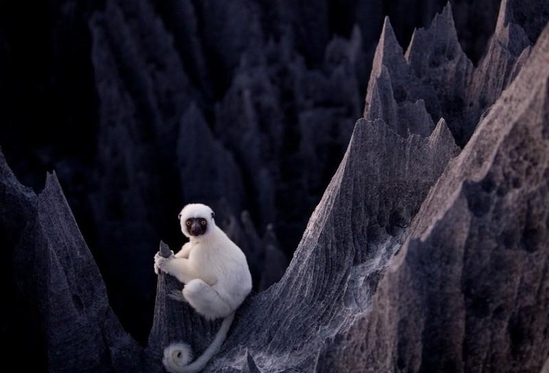 Madagaskar Kamena-suma-madagaskar-11