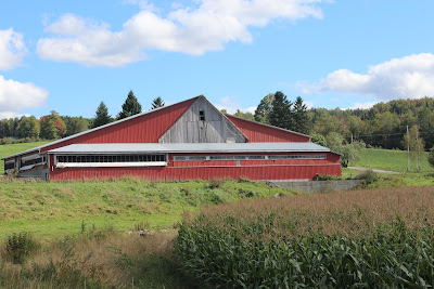 big+barn+and+corn2.jpg