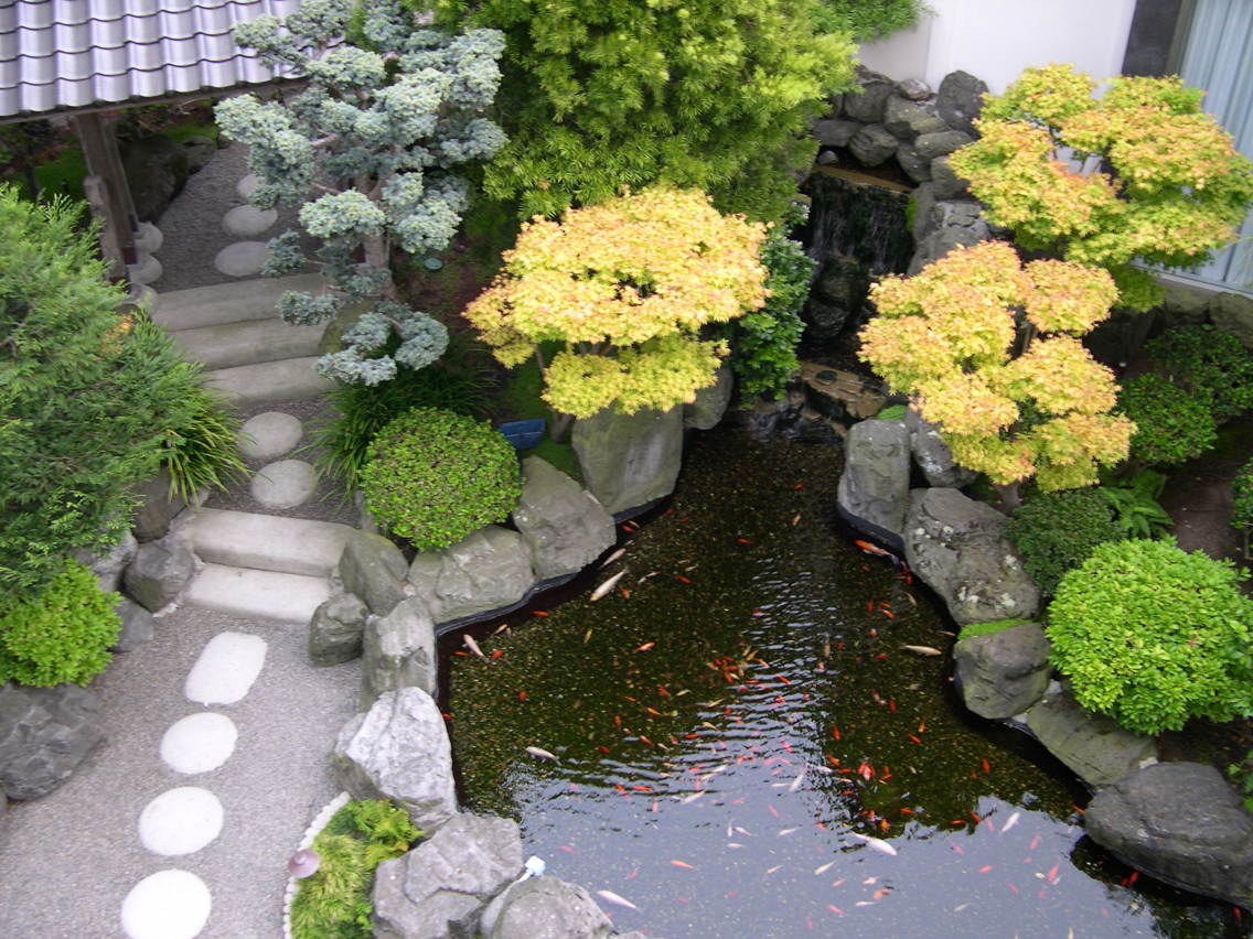 Healthy garden home garden healthy design for Japanese style plants