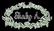 Dt Skaky A.
