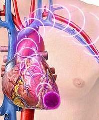 Penemuan baru teknologi pada sistem peredaran darah