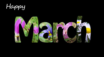 Welcome to MARCH