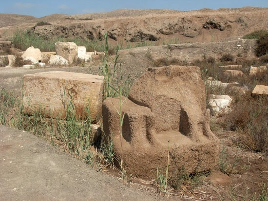 نتائج أعمال المعهد الألمانى للآثار فى تل الفراعين عام 2011م