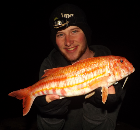 Mission impossible to catch 100 species of saltwater for Red mullet fish