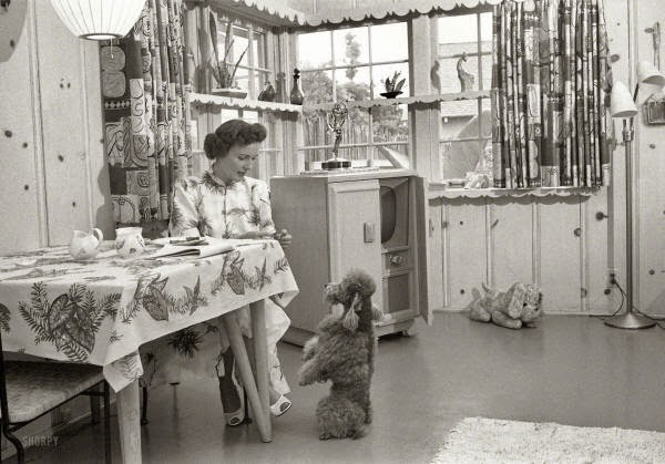 Betty White at home with her dog in 1952.