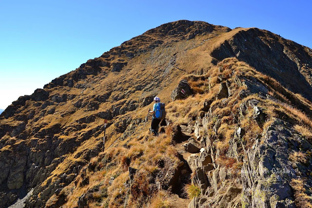 negoiu-peak-hike-before-laitel-peak
