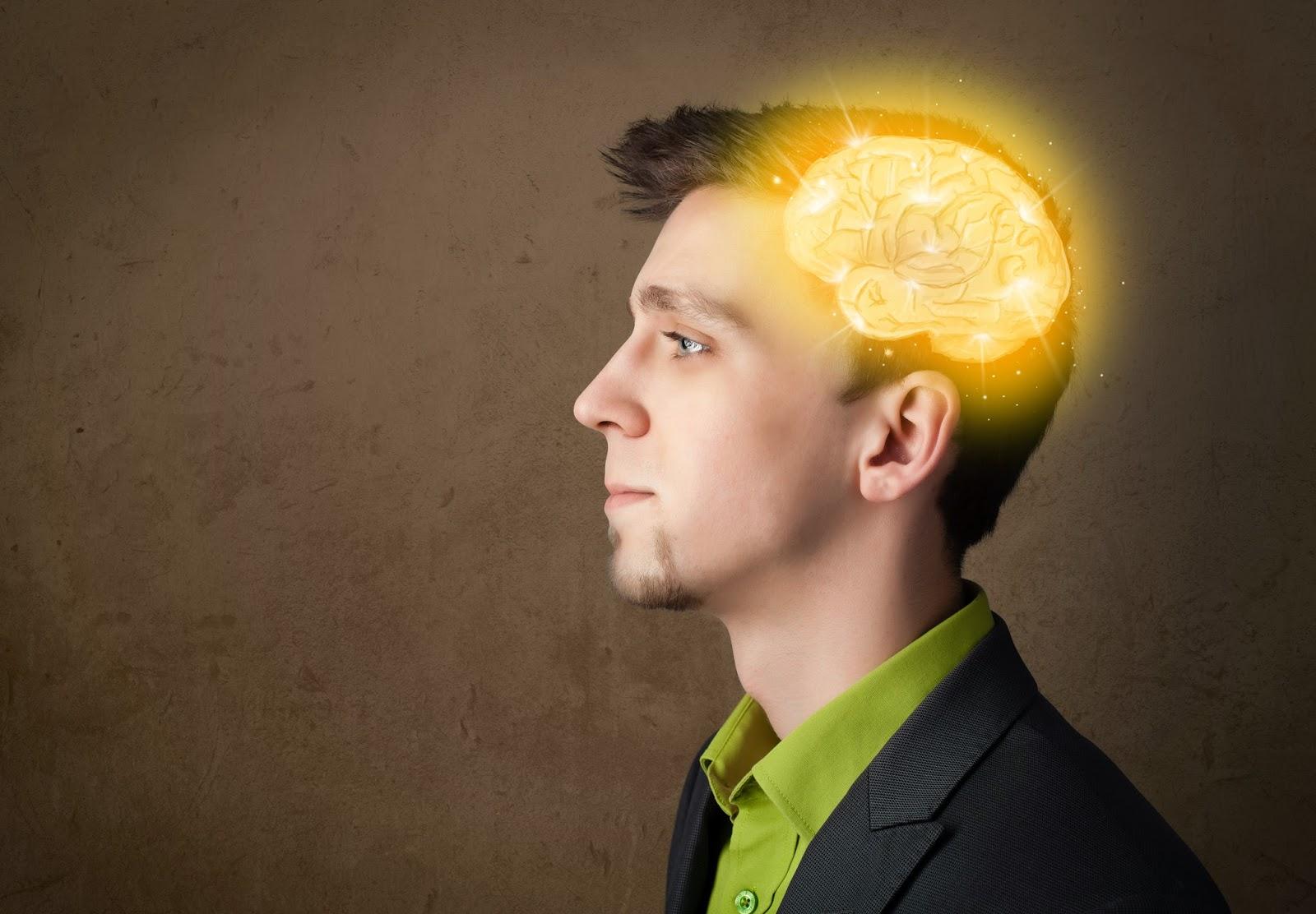 Мозг. Инструкция по применению 24