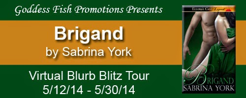 http://goddessfishpromotions.blogspot.com/2014/04/virtual-blurb-blitz-tour-brigand-by.html