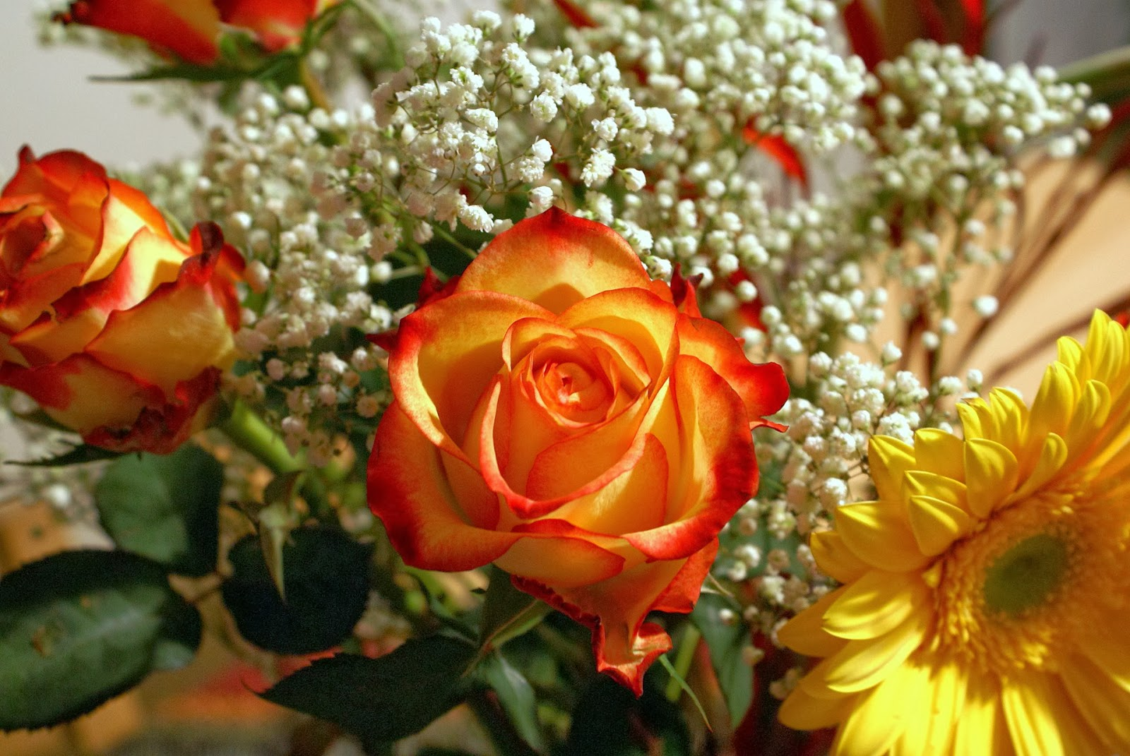 Yellow roses bouquet for Images of bouquets of roses