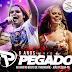 Forró Pegado – Aracaju – SE – 24.10.2014 – Rep. Novo