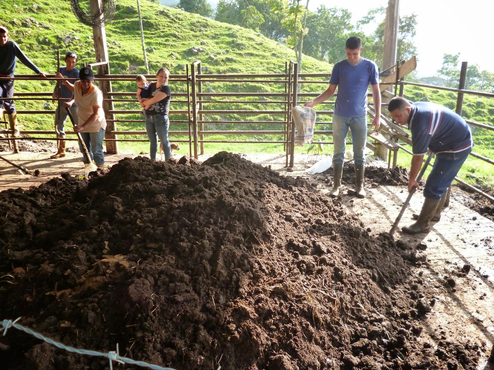 El portavoz virtual del tachira avanzan proyectos para la for Produccion de viveros