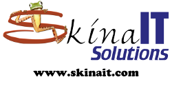 Blog Skina IT Solutions