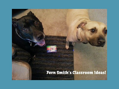 Fern Smith's Classroom Ideas Calvin and Scotty's Photobomb