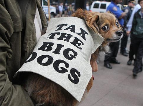 taxthebigdogs.jpg