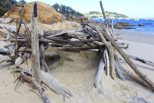 Driftwood sculpture at Cocora Beach Eden
