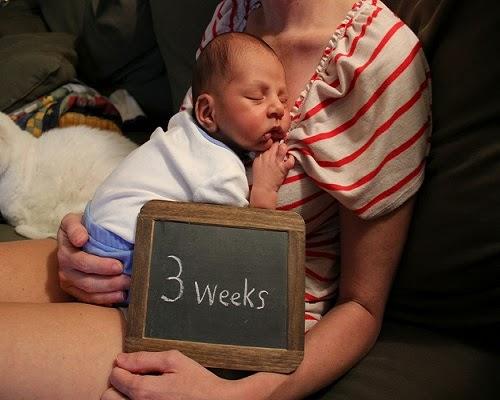 Photo bébé 3 semaines