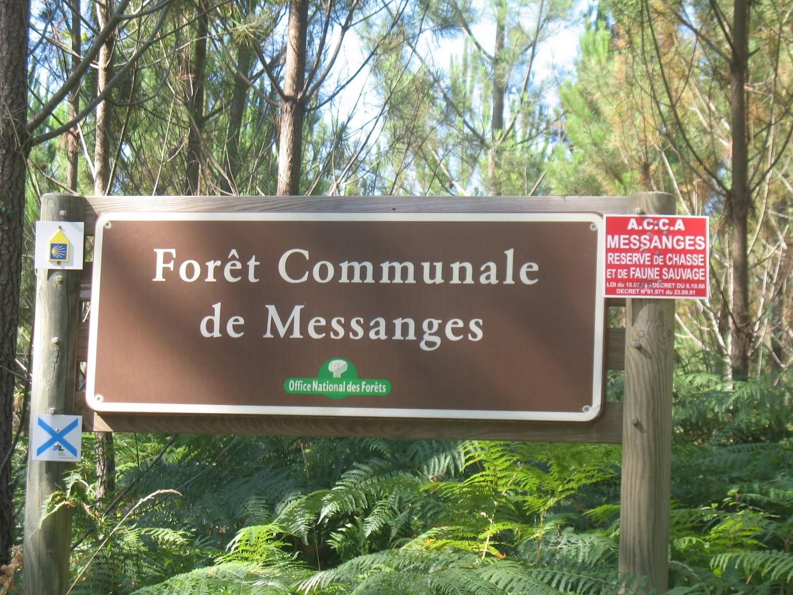 L 39 envol du lucane chemin de compostelle et 2012 19km de vielle saint girons vieux - Office de tourisme messanges ...