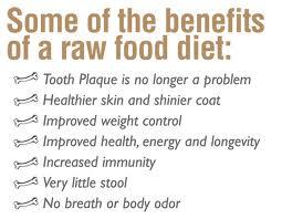 Benefits Of Bison Dog Food