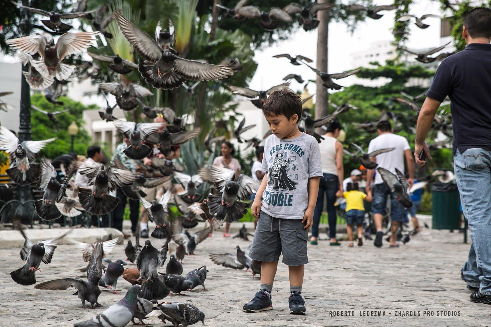 Parque Las Iguanas