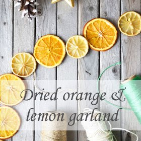 Dried Orange & Lemon Garland
