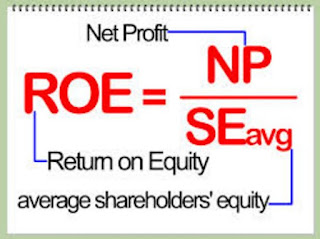 Pengertian Return of equity