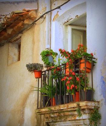 Balcones con flores y plantas