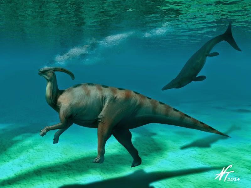 Zt2 Sauropod