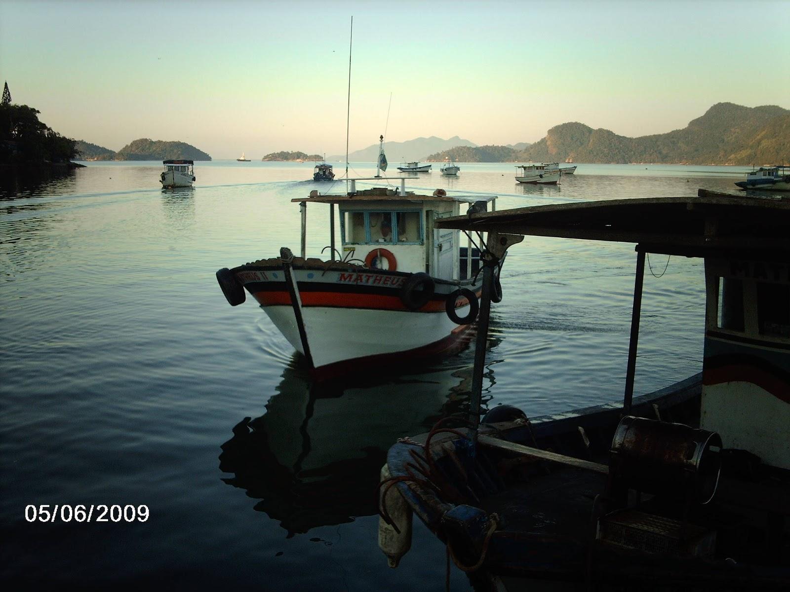 para a pescaria que será feita nas águas da Baia de Sepetiba #5D7E4D 1600x1200