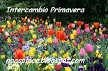 Intercambio de primavera