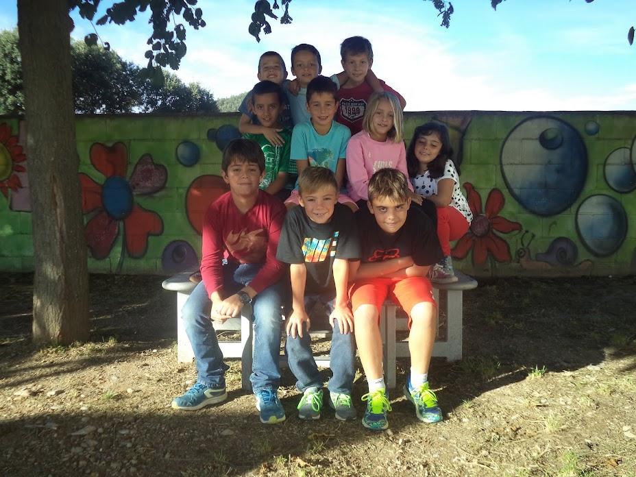 Cicle Mitjà - Escola Gira-sol (Montmajor)
