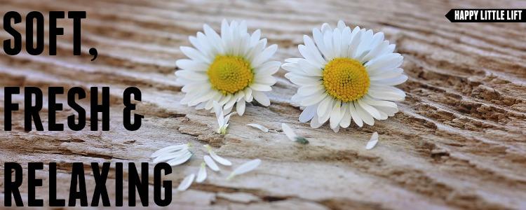 Baylis & Harding | Peony, White Tea & Jasmine Cover Image