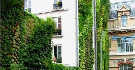 Jardines verticales soluci n ecol gica para Jardines verticales baratos