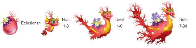 imagen de crecimiento del dragon coral