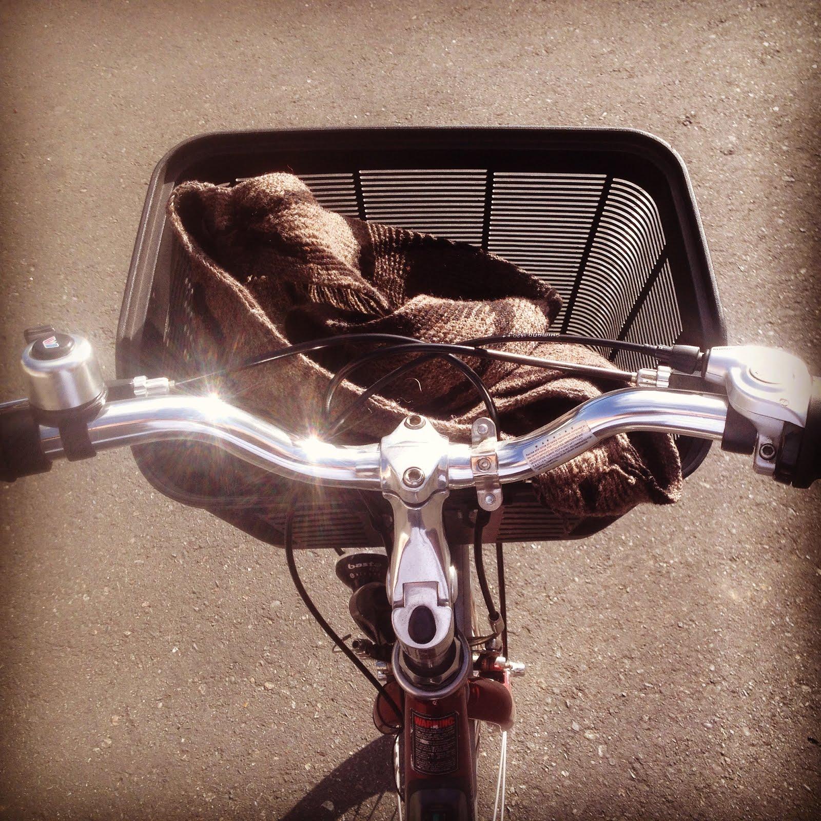 La cesta de la bicicleta