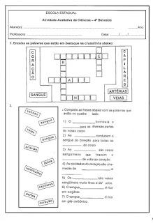 Atividade avaliativa de ciências - 5º ano