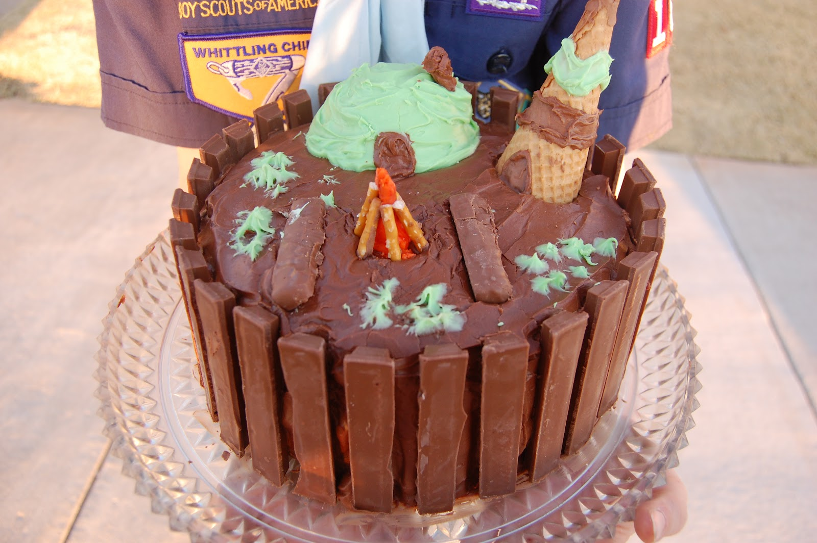 Cake Decorating For Boy Scouts : Babblings and More: Boy Scout Cake Decorating Contest