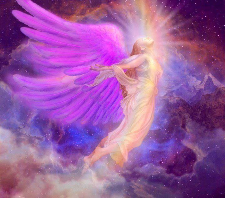 http://1.bp.blogspot.com/-LclDfRL_UDQ/Uy8r2S2M6NI/AAAAAAAABKw/8SGDr6lO_B8/s1600/angeles.jpg