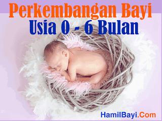 Perkembangan Bayi Usia 1 2 3 4 5 6 Bulan