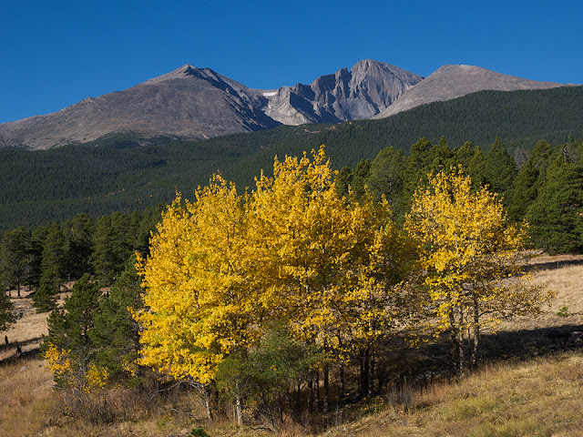 Longs Peak with Aspens from Peak to peak highway in Estes Park