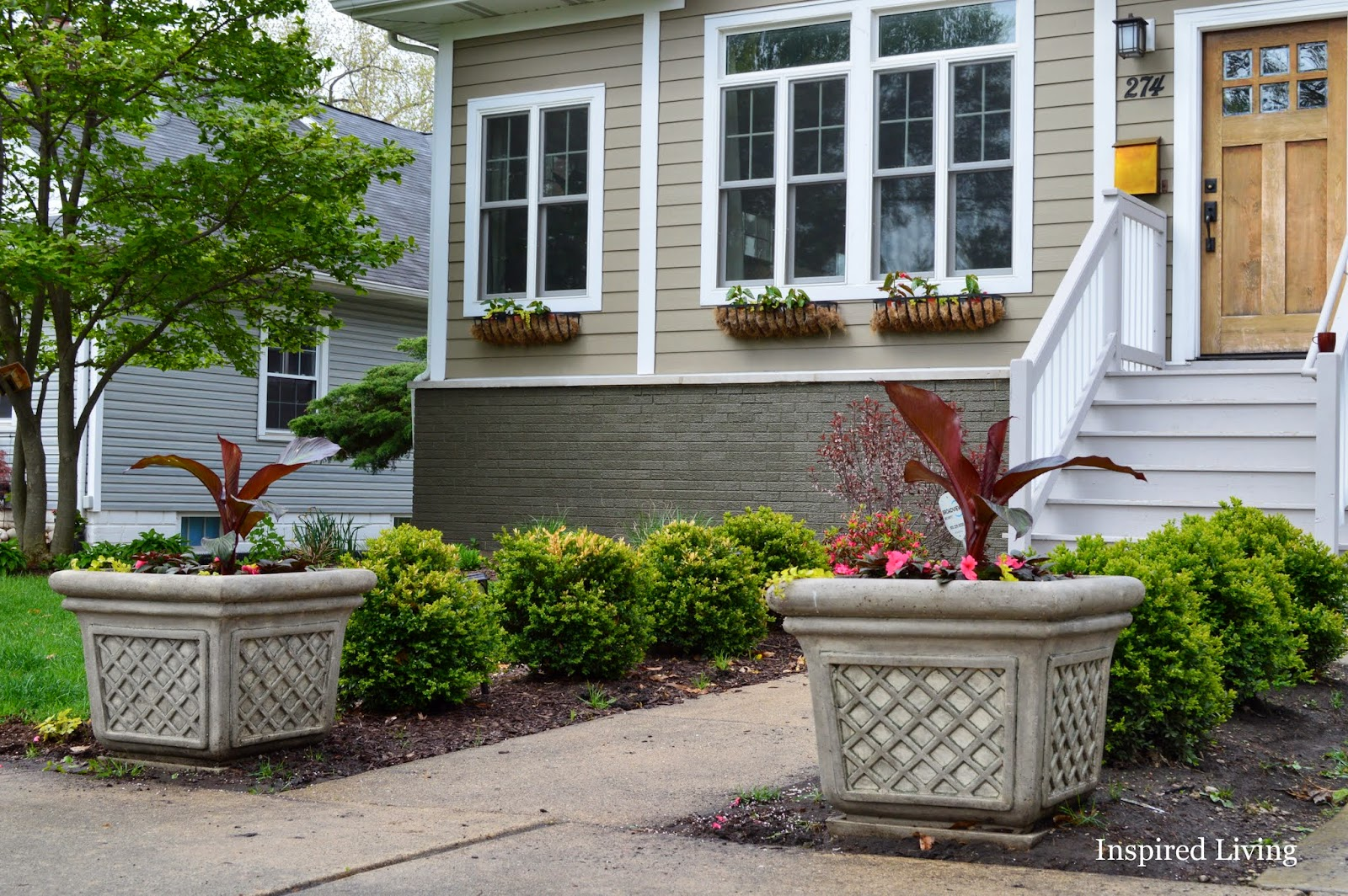 Inspired living creating an entrance summer planters for Planter ideas for front of house