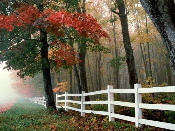 jesiennie I