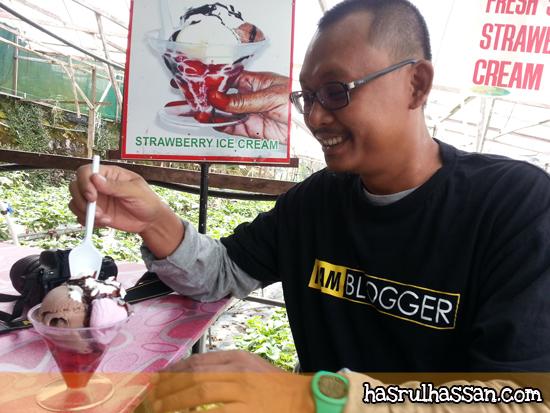 Strawberry Ice Cream Cameron Highlands