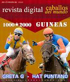 Caballos del Mundo - 1.000 # 2.000 Guineas GRETA G - HAT PUNTANO