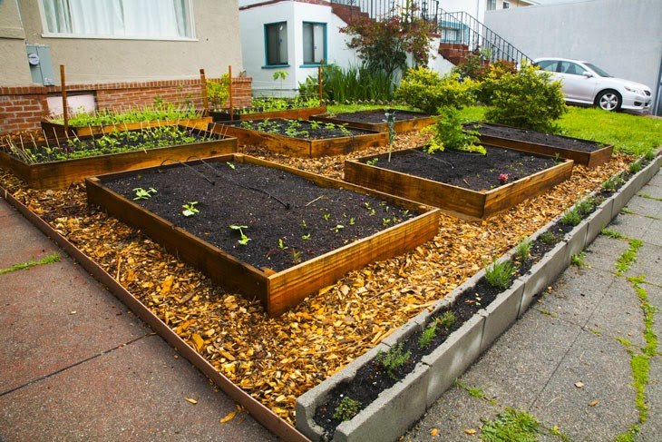 He Started With Some Boxes, 60 Days Later, The Neighbors Could Not Believe What He Built - Cinder blocks and wood chips fill in the rest of the lawn.