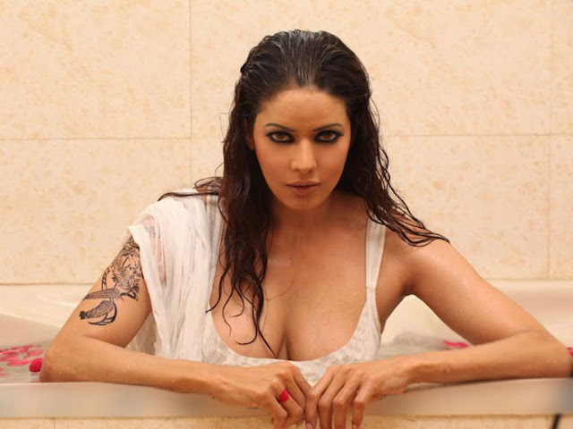 Indian Hot Model Poonam Jhawar